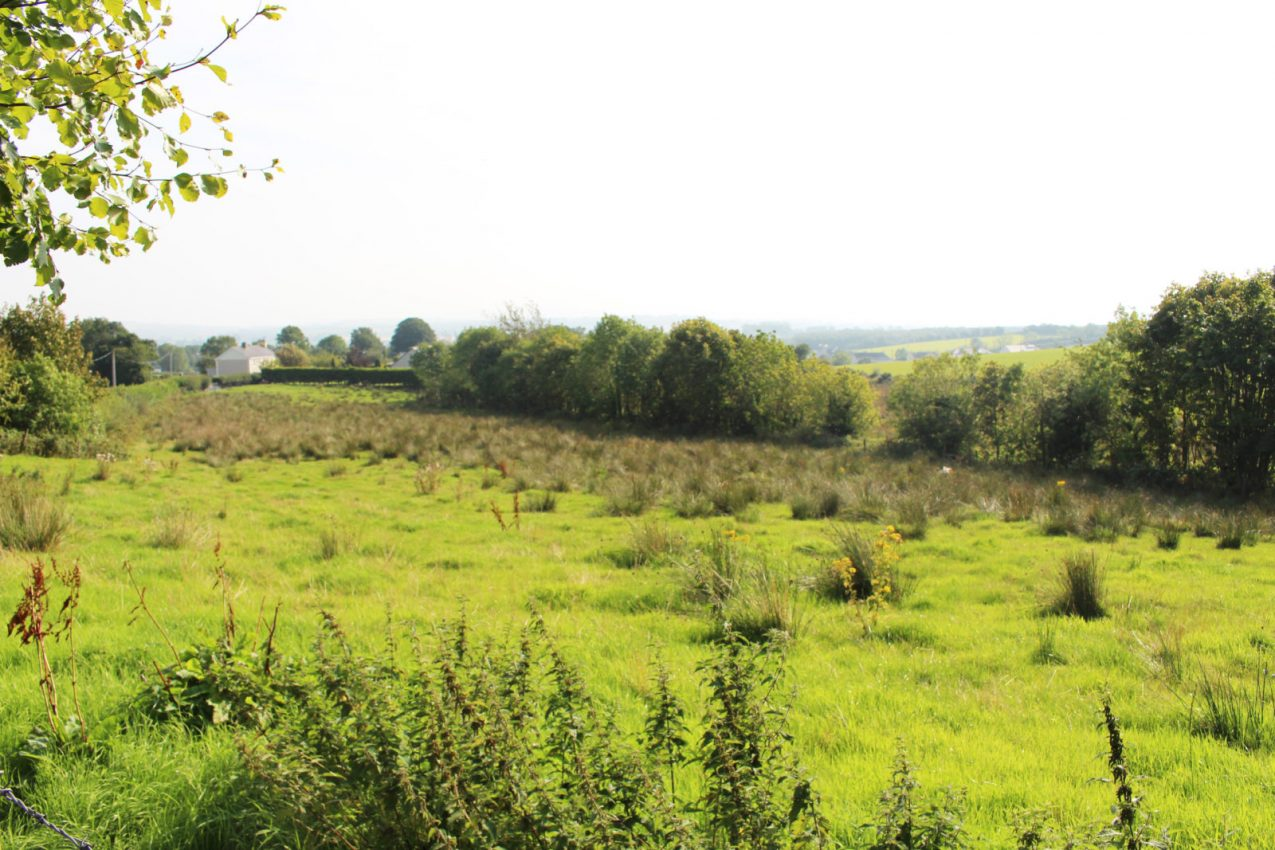 Site at Cross Carrigans